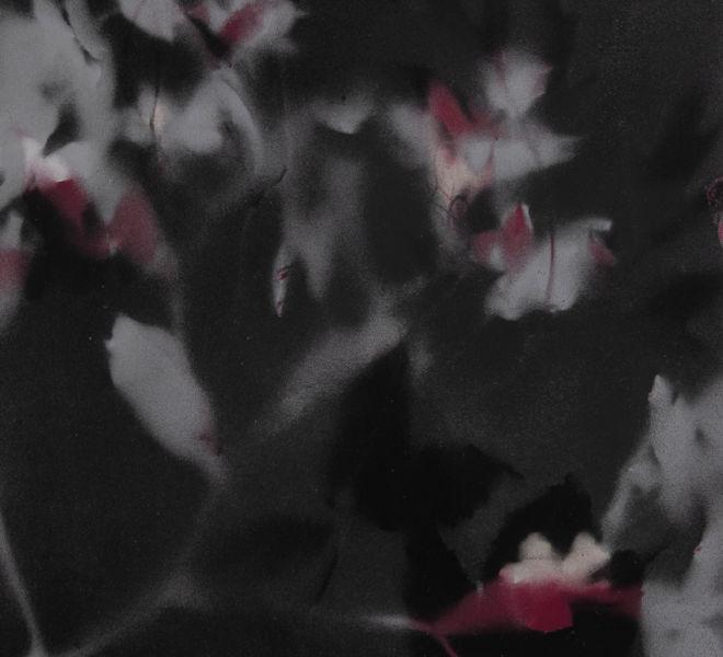 Leopold-Kogler_fleurs-fantomes_0134_Foto-(c)-kommunikationsagentur-sengstschmid