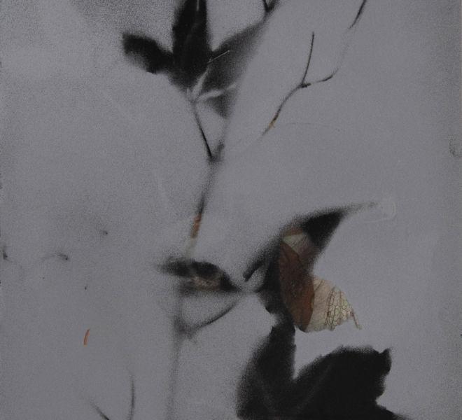 Leopold-Kogler_fleurs-fantomes_0141_Foto-(c)-kommunikationsagentur-sengstschmid