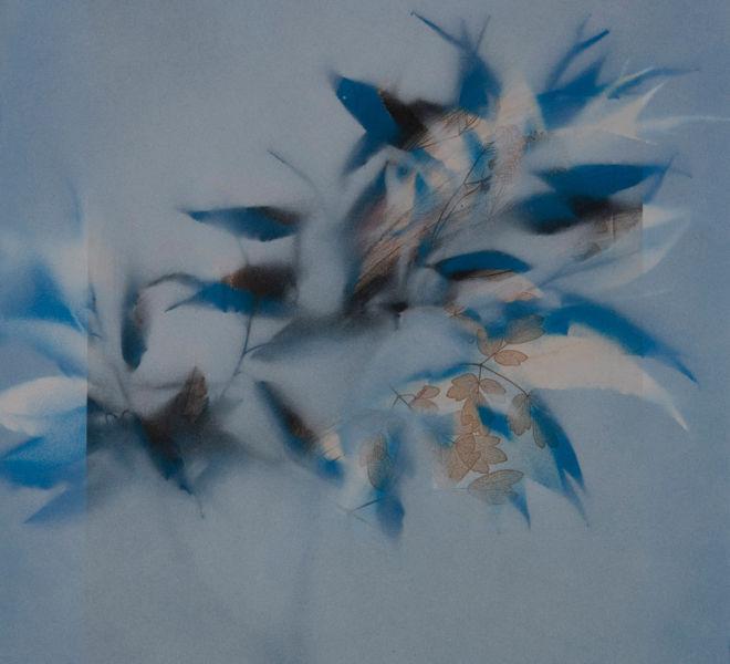 Leopold-Kogler_fleurs-fantomes_0180_Foto-(c)-kommunikationsagentur-sengstschmid