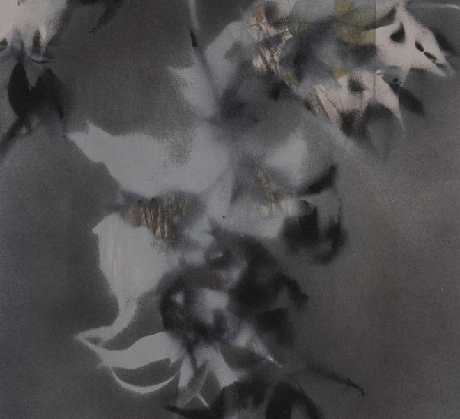 Leopold-Kogler_fleurs-fantomes_0204_Foto-(c)-kommunikationsagentur-sengstschmid